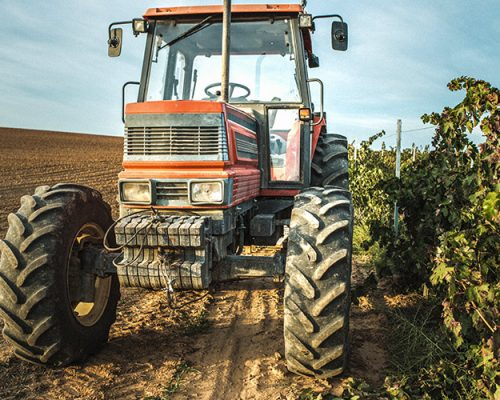 Tractor in a vineyard
