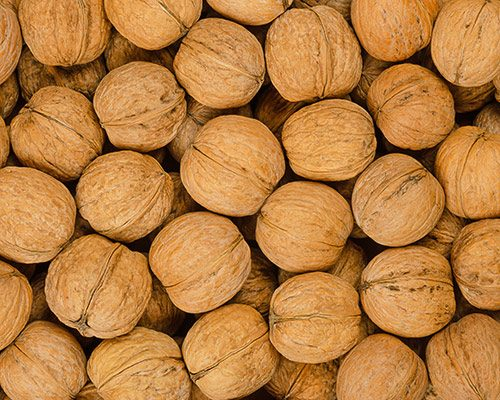 walnuts-background-close-up-pile